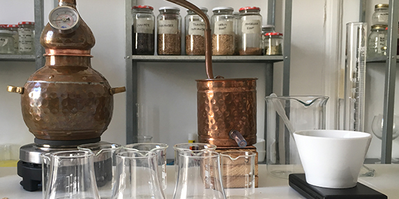Distilling Gin in Spain: an Airbnb Experience